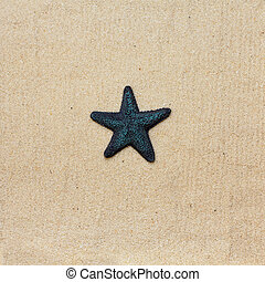 Blue starfish on the sea sand