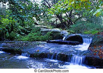 Blue stream - Stream after storm