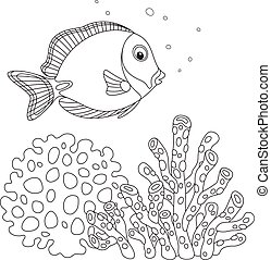Blue surgeon fish - Black and white vector illustration of a...
