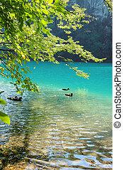 blue tó