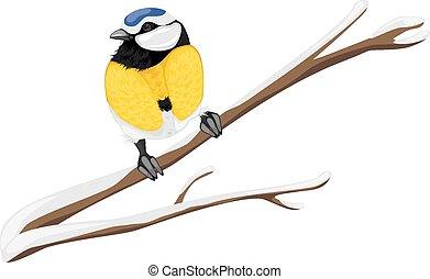 Blue tit sitting on a branch tree. Vector illustration