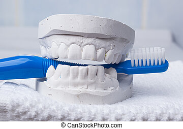 Blue toothbrush with dental gypsum