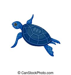 Blue turtle. View from above. Vector illustration on white background.