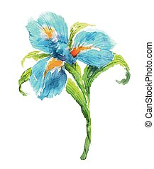 Blue watercolor iris flower. Watercolor floral illustration.