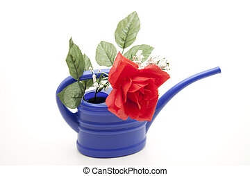 Blue Watering can with red rose