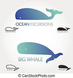 Blue Whale logos set. Concept fish logo. Simple icon or logotype.