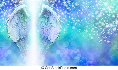 Blue wings on sparkling bokeh - Wide blue bokeh background ...