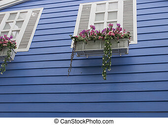 blue wood wall with white window