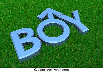 Blue Word Boy on Grass/Gender Symbol
