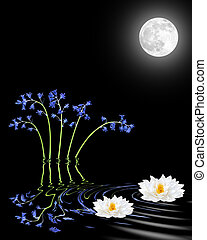 Bluebell and Lily Flowers By Moonlight - Bluebell and white...