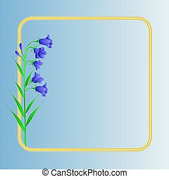 Bluebell campanula meadow spring flower blue background...
