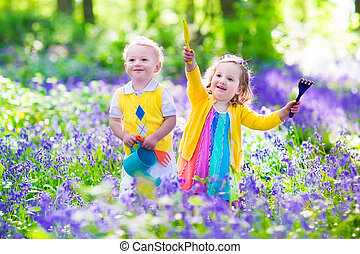 bluebell, flores, jardín, niños