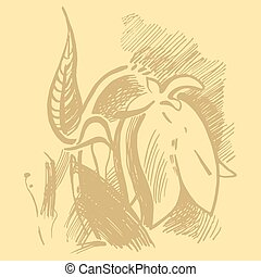Bluebell flower graphic illustration. Campanula drawing....