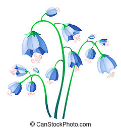 bluebell - Vector illustration of blue bells isolate on...