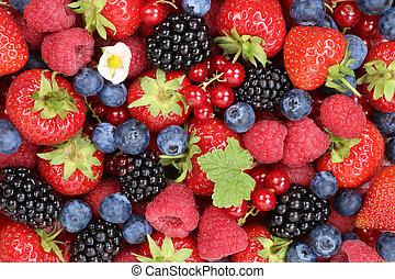 blueberries, 나무딸기, 장과, 배경, 과일, 딸기