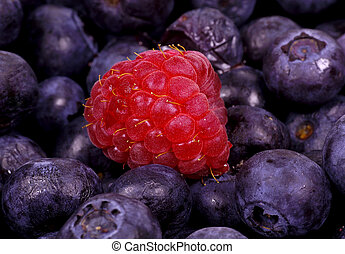 Raspberry - Blueberries and one Raspberry.