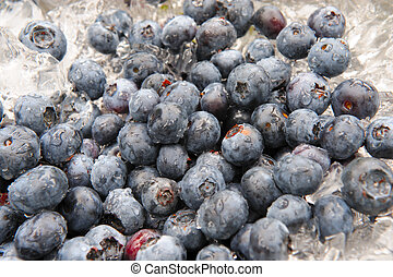 Blueberries Chilling On Ice