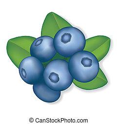 Blueberries - Fresh, natural garden blueberries. EPS8...