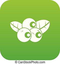 Blueberries icon digital green