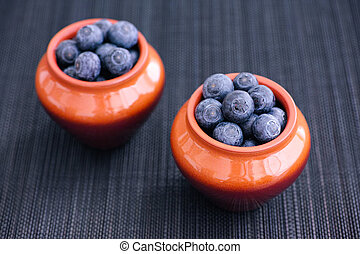 Blueberries in clay pots