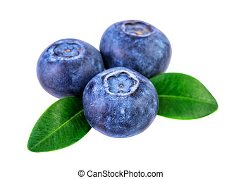 Blueberries isolated on white with clipping path