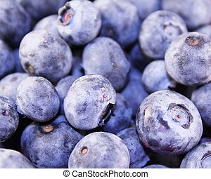 Blueberries (Macro) - Blueberries