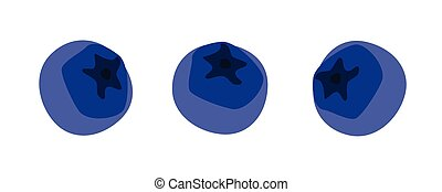 Blueberries set vector