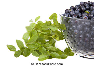 Blueberries with lives - Blueberries in a glass bowl on ...