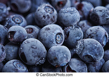 blueberry close up