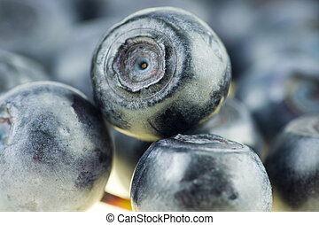 Blueberry close up isolated