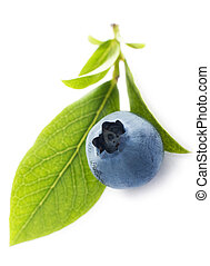 blueberry - fresh blue berry fruit close up isolated