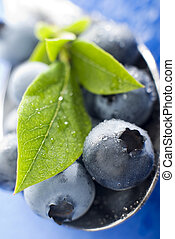 blueberry - fresh blue berry fruit close up shoot