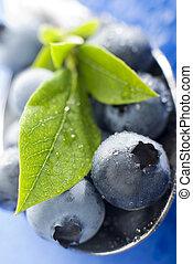 blueberry - fresh blue berry fruit close up shoot