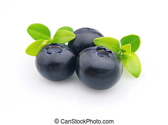 Blueberry - Fresh blueberry