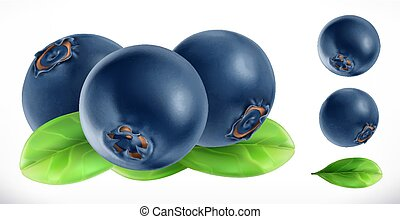 Blueberry. Fresh fruit 3d realistic vector icon