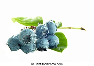 Blueberry - Groups of blueberries on white background