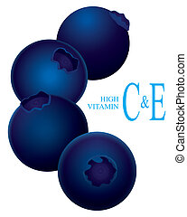 blueberry high vitamin C vector