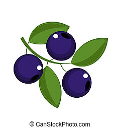 Blueberry fruits icon - vector illustration