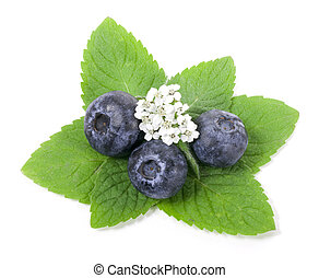 Blueberry with green leaf on white background