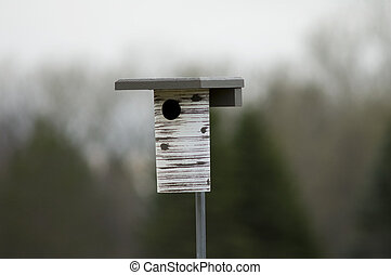 Bluebird Nest Box - Photo of a birdhouse or nest box mounted...