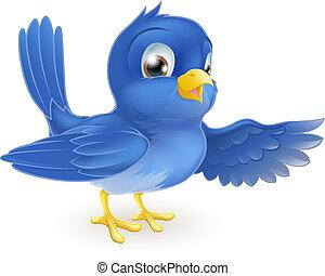 Bluebird pointing - Illustration of a standing bluebird...