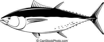 bluefin, 黒, マグロ, 白