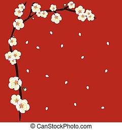 blume, blüte, pflaume, hintergrund, weißes, umrandungen, ...