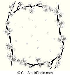 blume, grobdarstellung, blüte, pflaume, weißes, border2