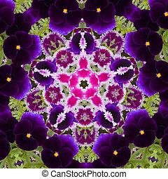 blume, kaleidoskop, ähneln, mandala