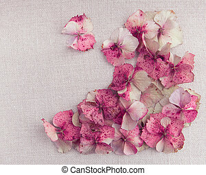 blume, Stoff, Boden, Weinlese, hortensie, blütenblätter, Recht, Ecke