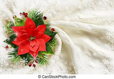 blume, zweige, poinsettia, anordnung, kiefer, beeren, weihnachten