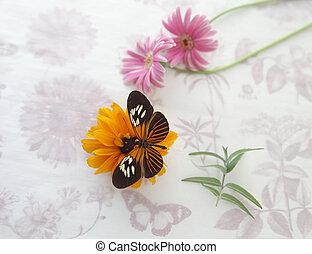 blumen, auf, papier, mit, papillon