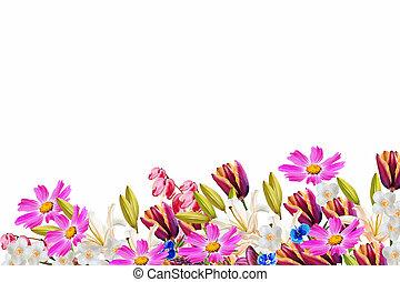 blumen-, hintergrund., bunte, und, hell, fruehjahr, flowers.