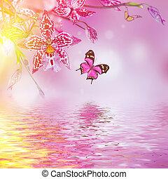 blumen-, hintergrund, von, tropische , orchideen, papillon